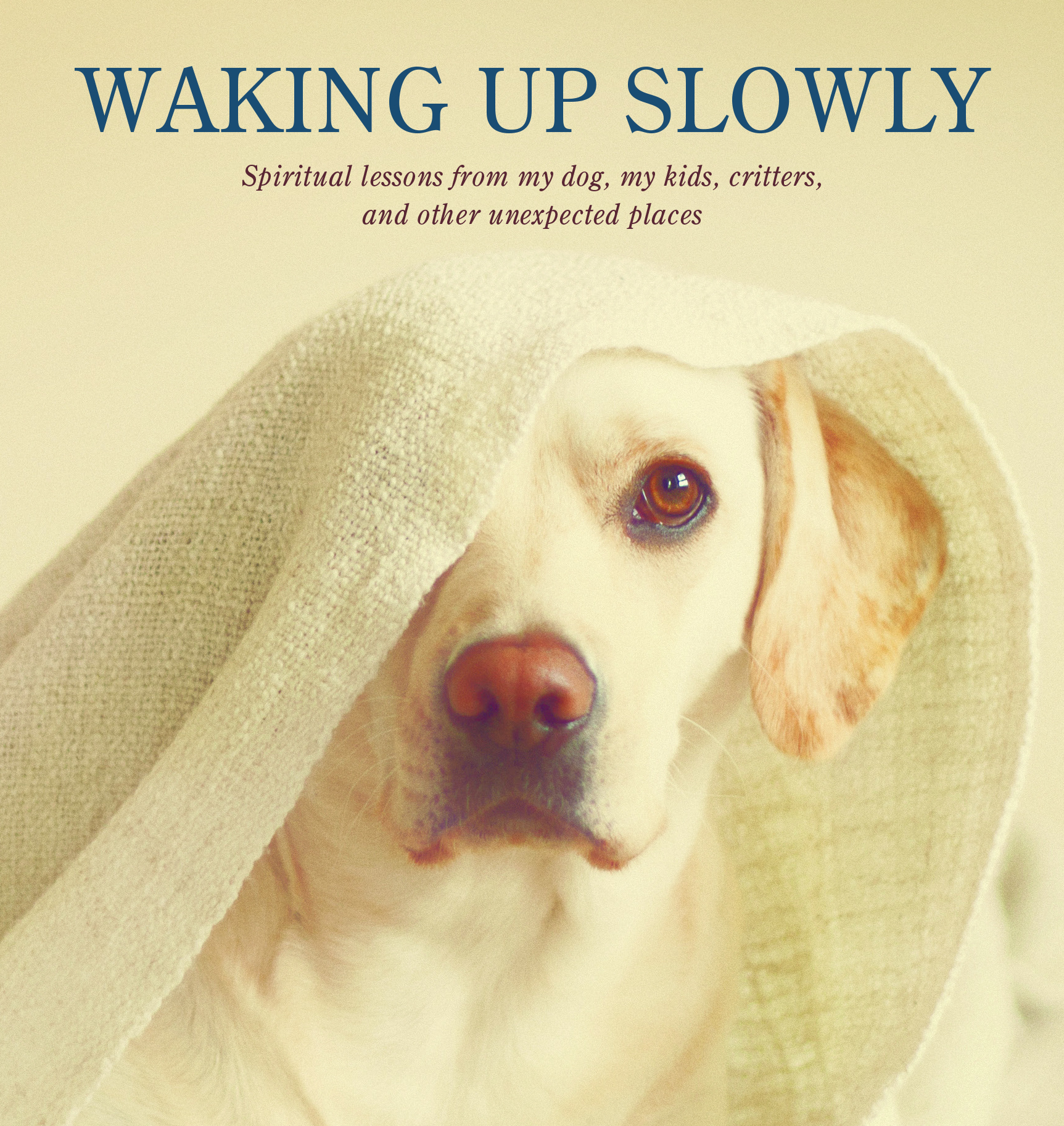 waking-up-cover-cropped